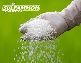 سولفات آمونیوم چیست؟