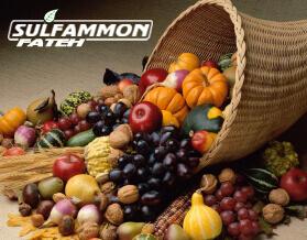 سولفات آمونیوم گرانوله؛کود کشاورزی پر مصرف